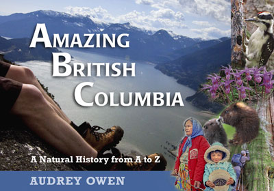 Amazing British Columbia book cover