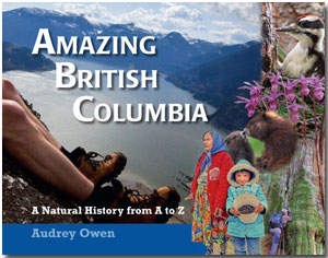 final front cover of Amazing British Columbia